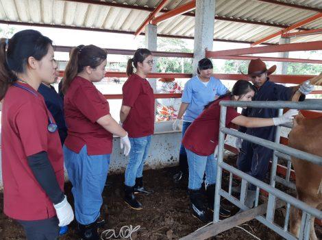 ฝึกปฏิบัติที่คอกวัว 1 กย. 2562_๑๙๐๙๑๗_0007